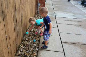 Blissfield Michigan Children Placing Painted Rocks