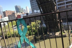 Chicago IL Teal Lights Ribbon Fence Day