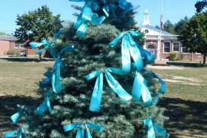 Pembroke MA Evergreen Teal Ribbons