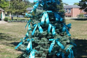 Pembroke MA Evergreen Teal Ribbons Sign