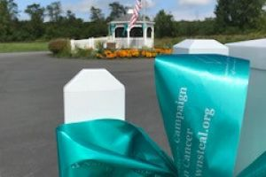 Princetown Ny Teal Ribbon Fence
