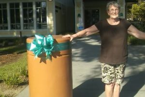 Summerville SC Woman Tealed Pillar