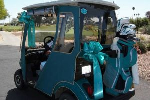 Sun City AZ Teal Golf Cart