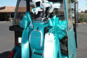 Sun City AZ Teal Golf Clubs