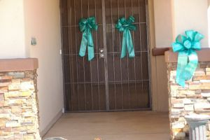 Sun City Teal Ribbon Door
