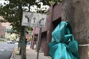 Trenton New Jersey Trees Teal Ribbons Down Street